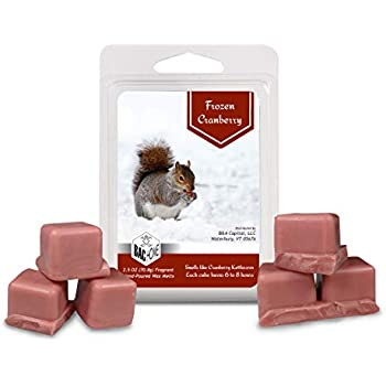 BAC Home Frozen Cranberry Soy Blend Scented Wax Melts Wax Cubes, 2.5 oz, [6 Cubes]