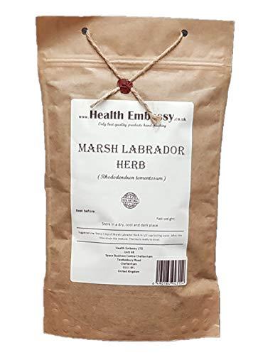 Sumpfporst Kraut (Rhododendron tomentosum - Ledum Palustre) / Marsh Labrador Herb - Health Embassy - 100% Natural (50g)