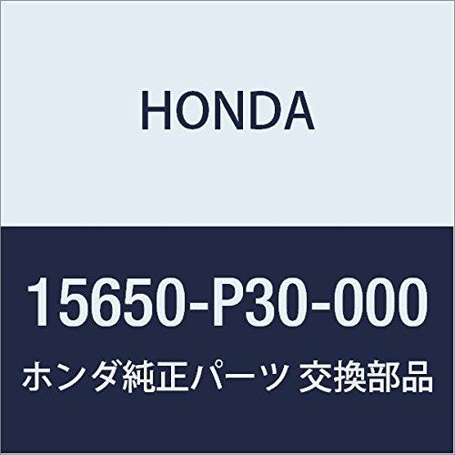 -P30-000) Oil Dipstick ()