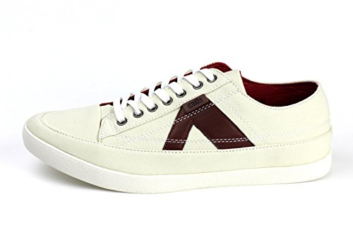 Herren Freizeit Schnürer Komfort Turnschuhe Sport Mode Fitnessstudio Flache Schuhe UK Größe 7-12 Weiß