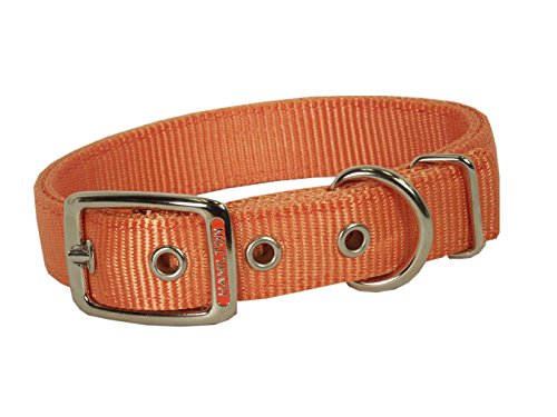 Hamilton Double Thick Nylon Deluxe Dog Collar, 1-Inch by 28-Inch, Mango Orange
