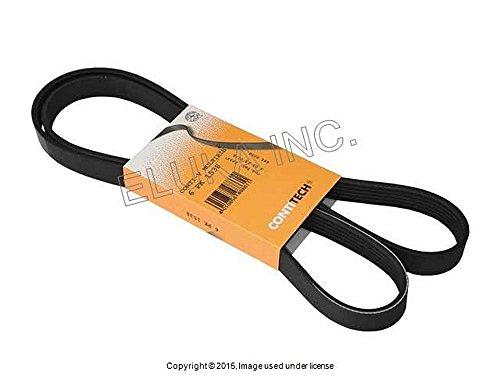 - BMW Belt 6K1538 Power Steering 6K X 1538 E39 E46 E53 E60 E83 525i 528i 530i 320i 323Ci 323i 325Ci 325i 325xi 328Ci 328i 330Ci 330i 330xi X5 3.0i 525i 530i X3 2.5i X3 3.0i Z3 2.5 Z3 2.5i Z3 2.8 Z33.0i