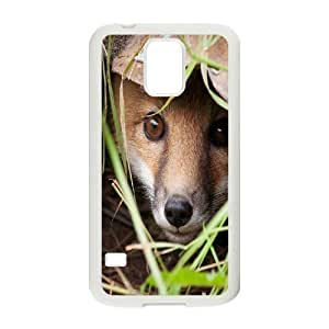 Custom Colorful Case for SamSung Galaxy S5 I9600, Sly Fox Cover Case - HL-699055