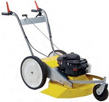 ROQUES & LECOEUR 206 - Desbrozadora con ruedas profesional, motor B&S XM60 autopropulsado, 2 velocidades: Amazon.es: Bricolaje y herramientas