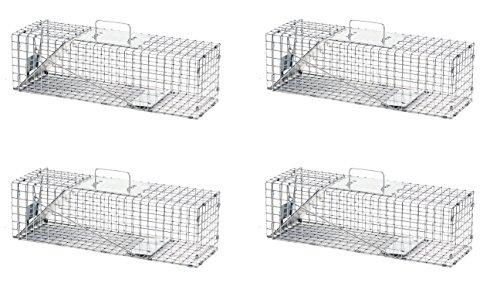 Havahart Medium Professional Style One-Door Animal Trap for Rabbit, Skunk, Mink, and Squirrel - 1078 (Pack of 4) ()