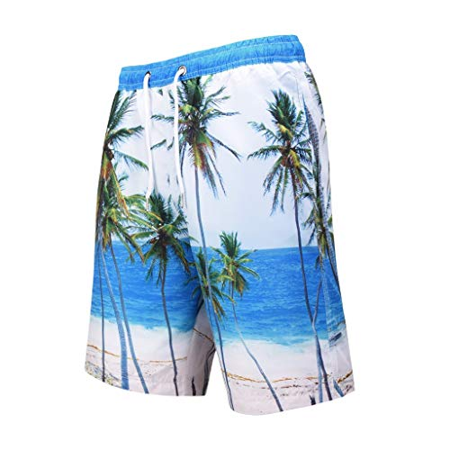 Benficial Fashion Men's Strapped Hawaiian Beach Fit Sport Quick Dry Casual Shorts Pants ()