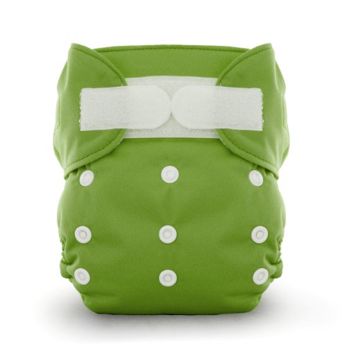 - Thirsties Duo All in One Cloth Diaper, Meadow, Size Two (18-40 lbs)