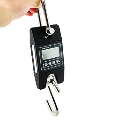 Denshine Báscula Peso 300 kg/x 100 G Mini Digital con gancho para pesca Industrial