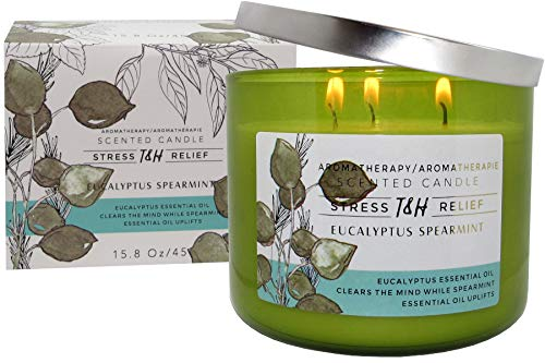(T&H Eucalyptus Spearmint Aromatherapy Candles Stress Relief Pure Soy Wax 3-Wick Candle 80 Hour Burn 16 Ounce Long)