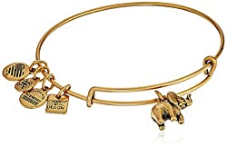 Alex and Ani (4)  Buy new: $28.00 - $28.80