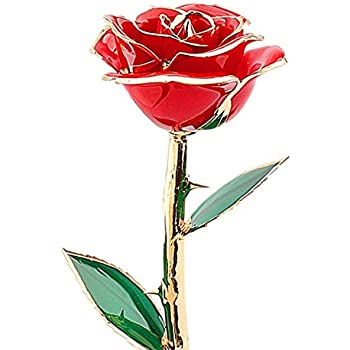 Valentines Day Gifts For Her ZJchao Love Forever Long Stem Dipped 24k Gold Foil Trim Rose Best Gift Mothers Anniversary