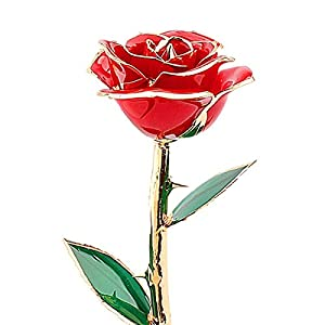 ZJchao for Her, Love Forever Long Stem Dipped 24k Gold Foil Trim Rose, Best Gift for Valentine's Day, Anniversary, Birthday Gift (Red) 23