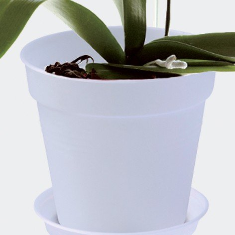 ELHO Anzuchttopf für Orchideen green basics, 13 cm, transparent