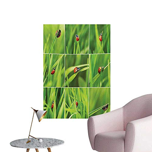 Anzhutwelve Ladybug Wall Sticker Decals Ladybug Over Fresh Grass Collection Divided Collage Vibrant Life Lawn Foliage ThemeGreen Red W32 xL36 Poster Print