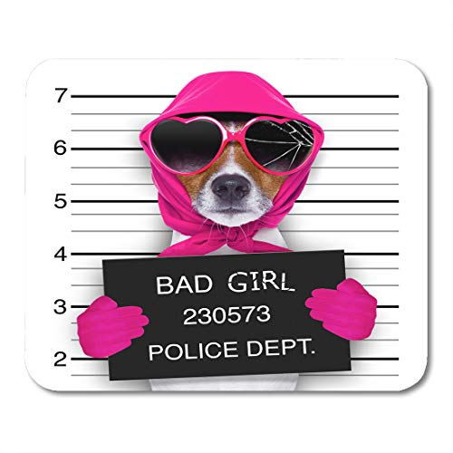 "Emvency Mouse Pads Diva Lady Girl Dog Posing for Lovely Mugshot As Criminal and Thief Broken Sunglasses Scarf Mousepad 9.5"" x 7.9"" for Laptop,Desktop Computers Office Supplies Mouse Mats"