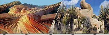 Blue Ribbon Pet Products ABLVSB1419 Desert Decorative Background for Aquarium, 19-Inch 50-Feet by Blue Ribbon
