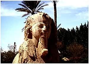تابلوه المناظر الطبيعية للمواقع مصر 23 × 18 سم - 2724820206340