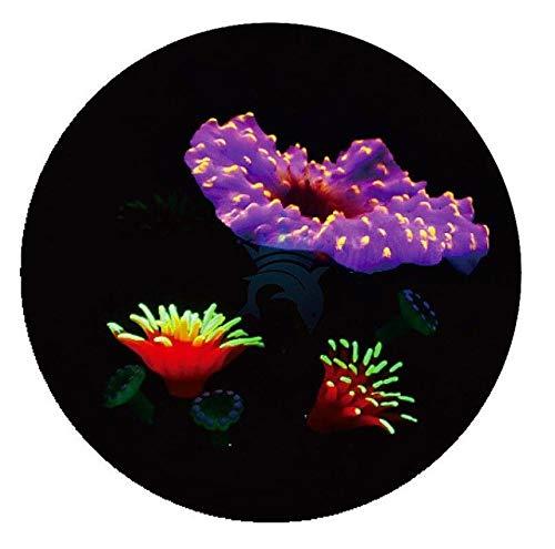 1PCS Aquarium Luminous Plants Ornaments Landscaping Accessories Noctilucent Stone Coral Aquarium Decoration Accessories   purple, 13X11X12CM