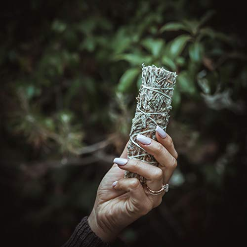MI Organics California Black Sage Smudge Stick: Set of 3 Smudging Sticks for Cleansing and Healing - 4 to 5 Inches Long