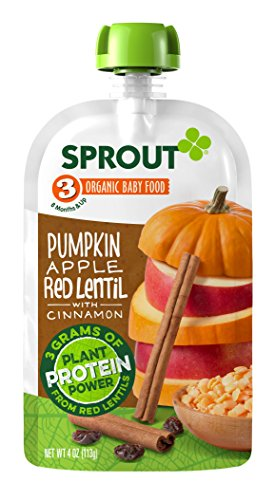 Sprout Organic Pouches Pumpkin Cinnamon product image