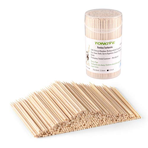 China Toothpick Holder - TONGYE Bamboo Toothpicks 3.5 Inch with Clear Cylinder Holder. Ornate Kokeshi Style Skewers for Party, Appetizer, Olive, Barbecue, Fruit and Teeth Cleaning. 340 PCS (1 Pack)