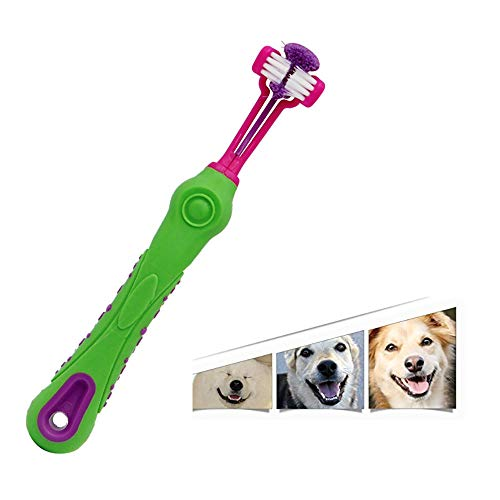 ZNZN Triple Head Pet Toothbrushes, Cleaning The Whole Tooth for Medium Large Sized Dogs, Ergonomic Handle Design for Easy Oral Care Grooming,Green