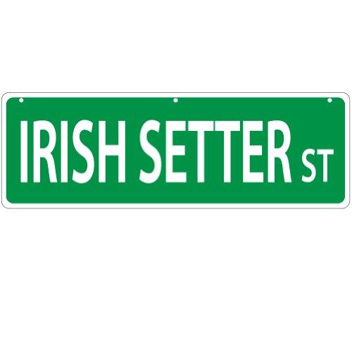 Imagine This Irish Setter Street Sign