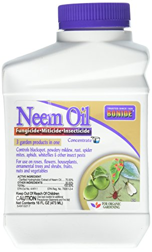 garden safe neem oil extract - 1