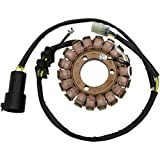 Ricks Motorsport Electric 21-644 Stator