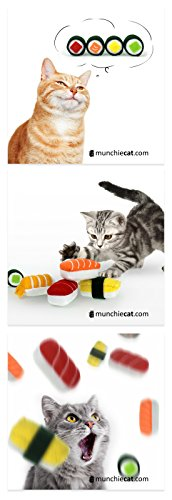 Cat and Sushi Magnets | Set of 3, 2