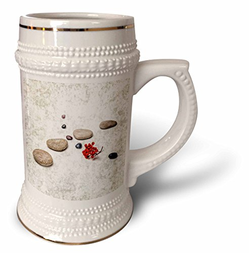 3dRose Alexis Photography - Objects Zen - Intersection of stones and pebbles, cluster of red rowan berries. Zen - 22oz Stein Mug (stn_265666_1)