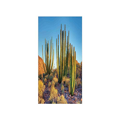 3D Decorative Film Privacy Window Film No Glue,Cactus Decor,Photo of Nature Desert Cactus with Spikes and Mountains Open Clear Sky Image,Multicolor,for Home&Office