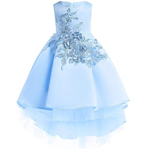 Baby Girls Infant Embroidery Dress Wedding Toddler High-end Dress Flower Dress,D0582-SkyBlue,6]()