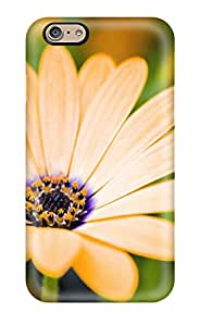 8071519K70797593 Forever Collectibles Growing Flowers Hard Snap-on Iphone 6 Case