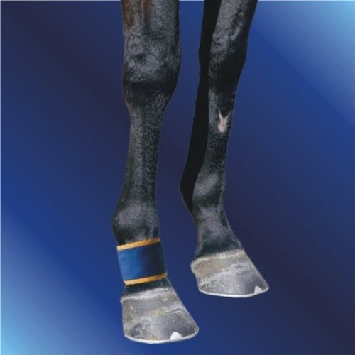Dick Wicks DW09PFB Magnetic Pastern & Fetlock Boot
