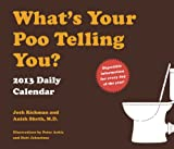 img - for 2013 Daily Calendar: What's Your Poo Telling You? book / textbook / text book