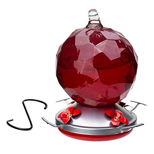 Best Home Products Hummingbird Feeder, Blown Glass, Candy Apple, 24 - Apple Feeder