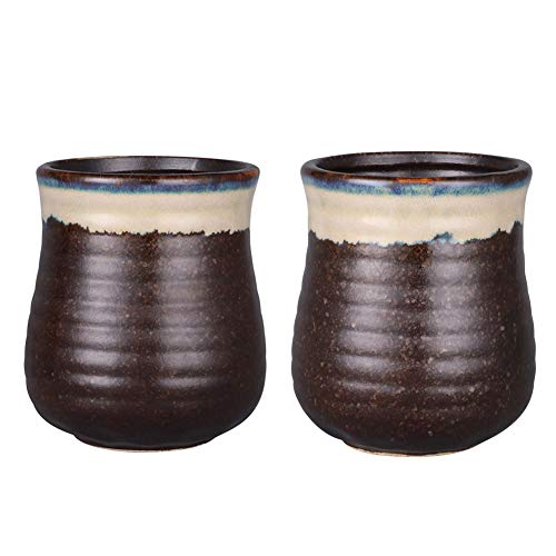 (Sunddo Japanese Tea Cups Ceramic Teacup Mug Set of 2 12oz)