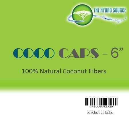 Coco Cultivate 6