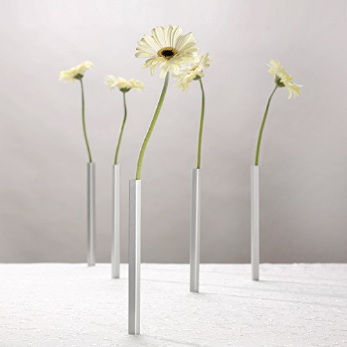 (PELEG DESIGN DCI Magnetic Flower Vase, Centerpiece, Set of 5)