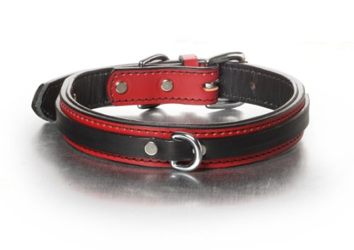 Woofwerks Tucker Overlay Collar, 20-Inch, Red/Black