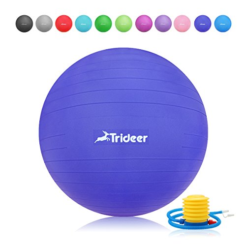 Exercise Ball, Yoga Ball, Birthing Ball with Quick Pump, Anti-Burst & Extra Thick, Heavy Duty Ball Chair 45cm 55cm 65cm 75cm 85cm Stability Ball Supports 2200lbs (Office&Home) (Indigo Blue, 55cm) Heavy Duty Foot Pump