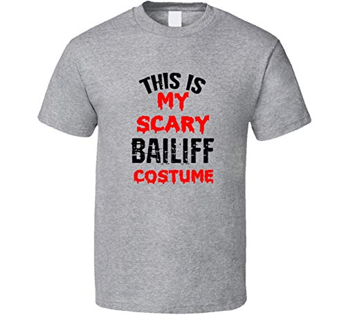 SHAMBLES TEES This is My Scary Bailiff Costume Tee Funny Halloween Party Occupation T Shirt L Sport Grey for $<!--$23.49-->