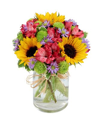 Perfect Day Get Well Soon - Same Day Get Well Soon Flowers Delivery - Get Well Soon Flowers - Get Well Bouquet - Sympathy Flowers - Get Well Soon Presents (Get Well Gifts Same Day Delivery)