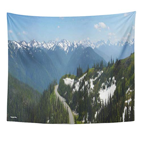 Semtomn Tapestry Artwork Wall Hanging Photography Hurricane Ridge Panorama Multi Landscape Olympic National Park 50x60 Inches Home Decor Tapestries Mattress Tablecloth Curtain Print -