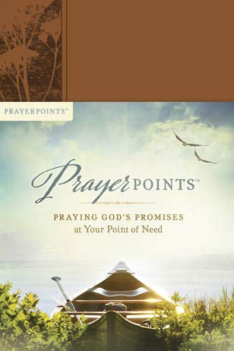 PrayerPoints: Praying God's Promises at Your Point of Need
