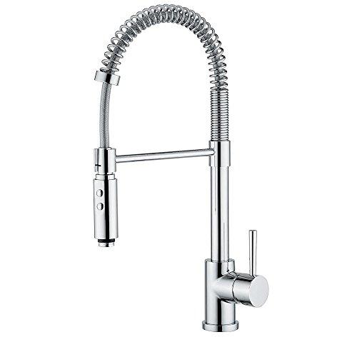 Linea 54292 Professional Faucet w 2 Spray Hand-Shower