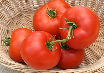 Mountain Princess (Heirloom) Tomato 150 Seeds By Jays Seeds Upc 643451295269