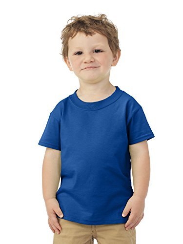 - Fruit of the Loom Toddler's 5 oz, 100% Heavy Cotton HD T-Shirt 3T Royal