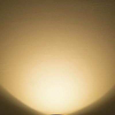 LOHAS 3W LED Light Bulb, G14 LED 25W Equivalent Light, E26 Medium Base Warm White 2700K LED Tiny Bulb, 120V Small Night Light Bulbs for Bedroom Ceiling Fan Table Lamp Lighting, Not-Dim 6 Pack